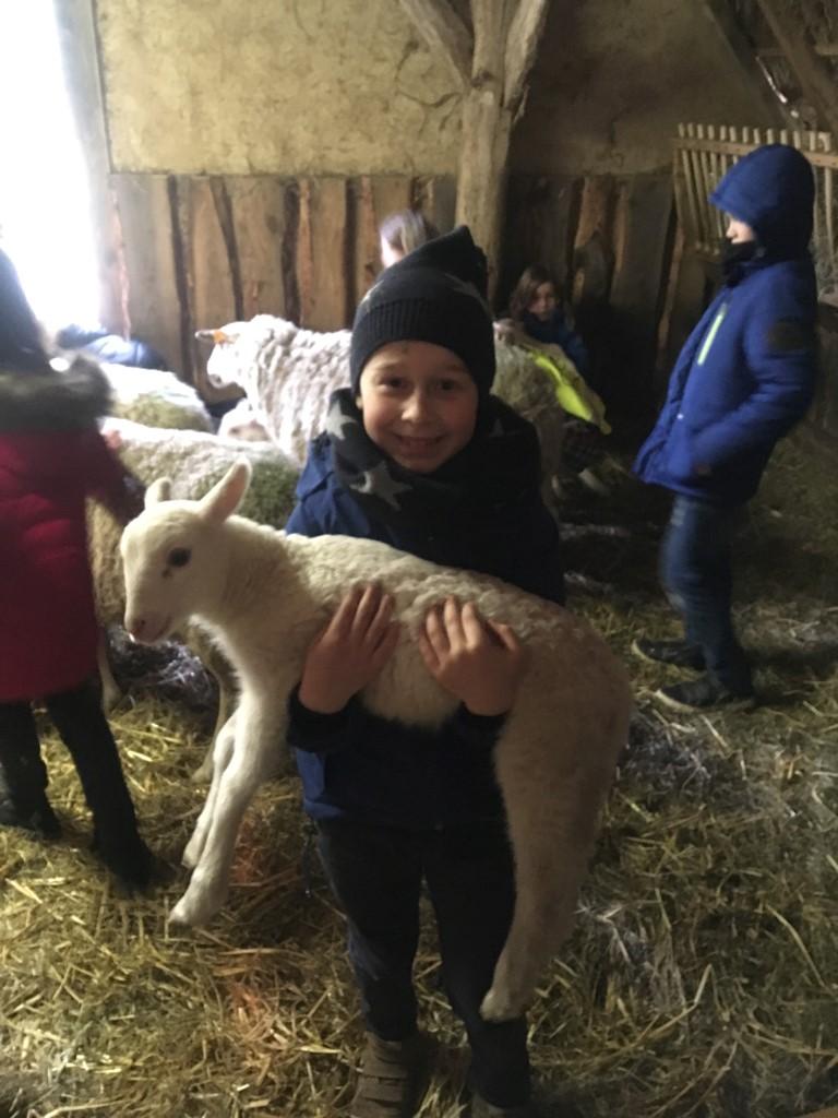 2de leerjaar op uitstap naar de schapenstal