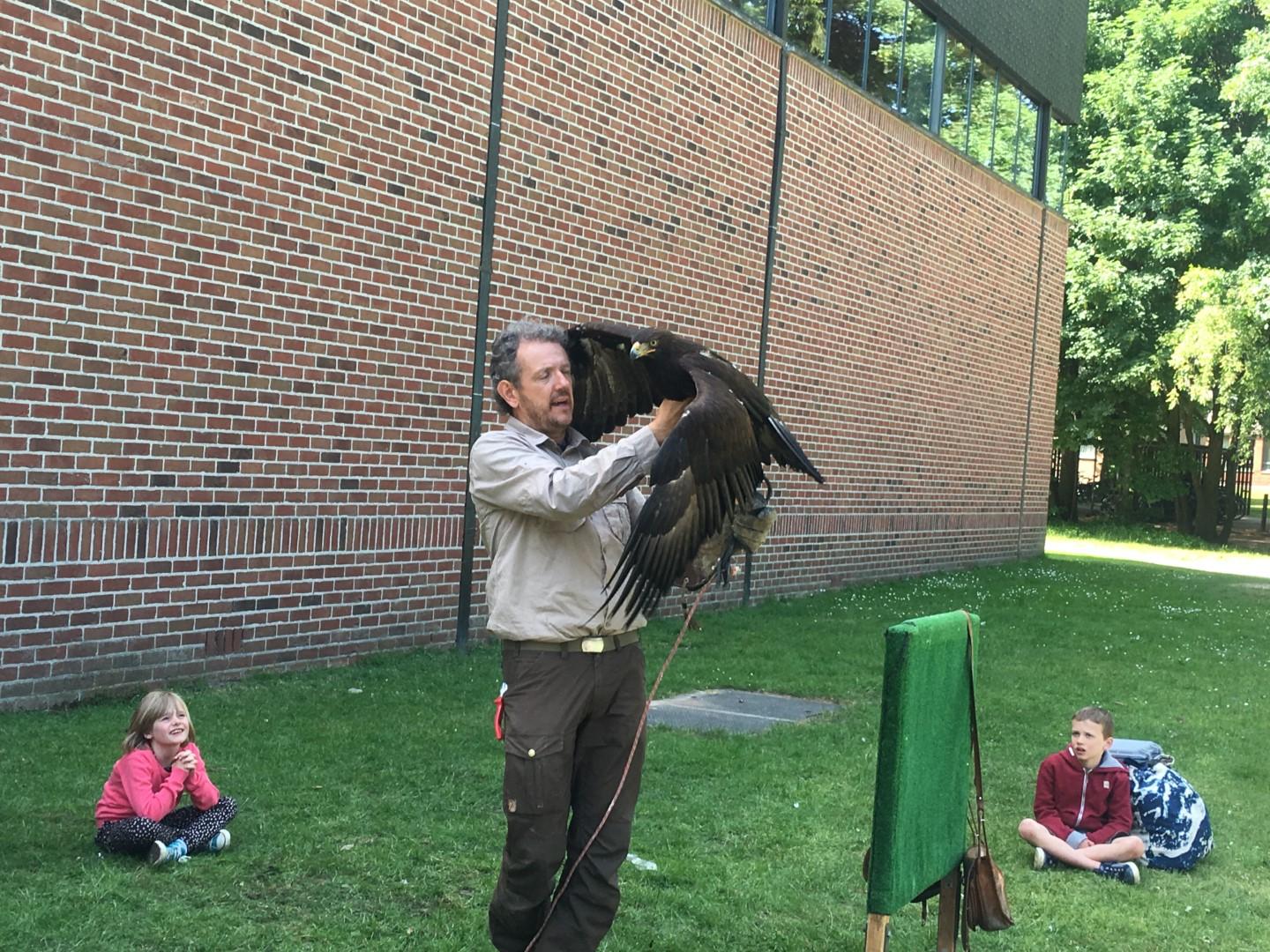 Roofvogelshow 2de leerjaar