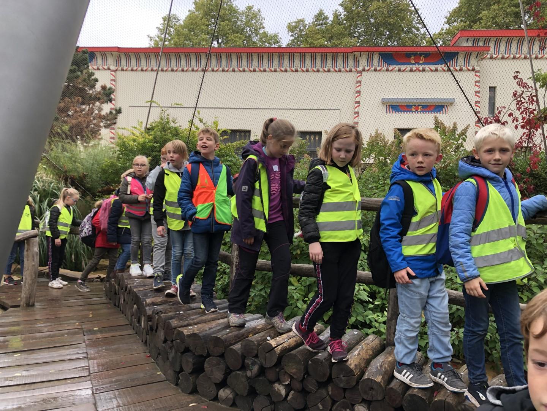 Zoo Antwerpen 3de leerjaar